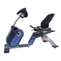 Endurance Recumbent Bike